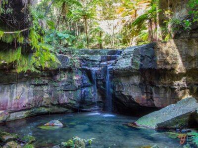 Carnarvon-Gorge-Queensland-Australia-73