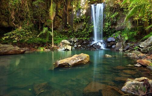 O'Reillys Rainforest Retreat